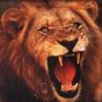 Roaring_lion